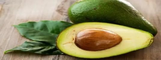 weight loss Avocado