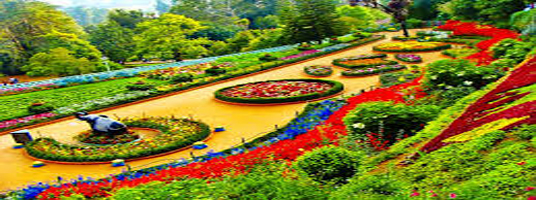 tourist places ooty botanical garden
