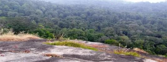 Nallamudi Poonjolai valparai tourist places