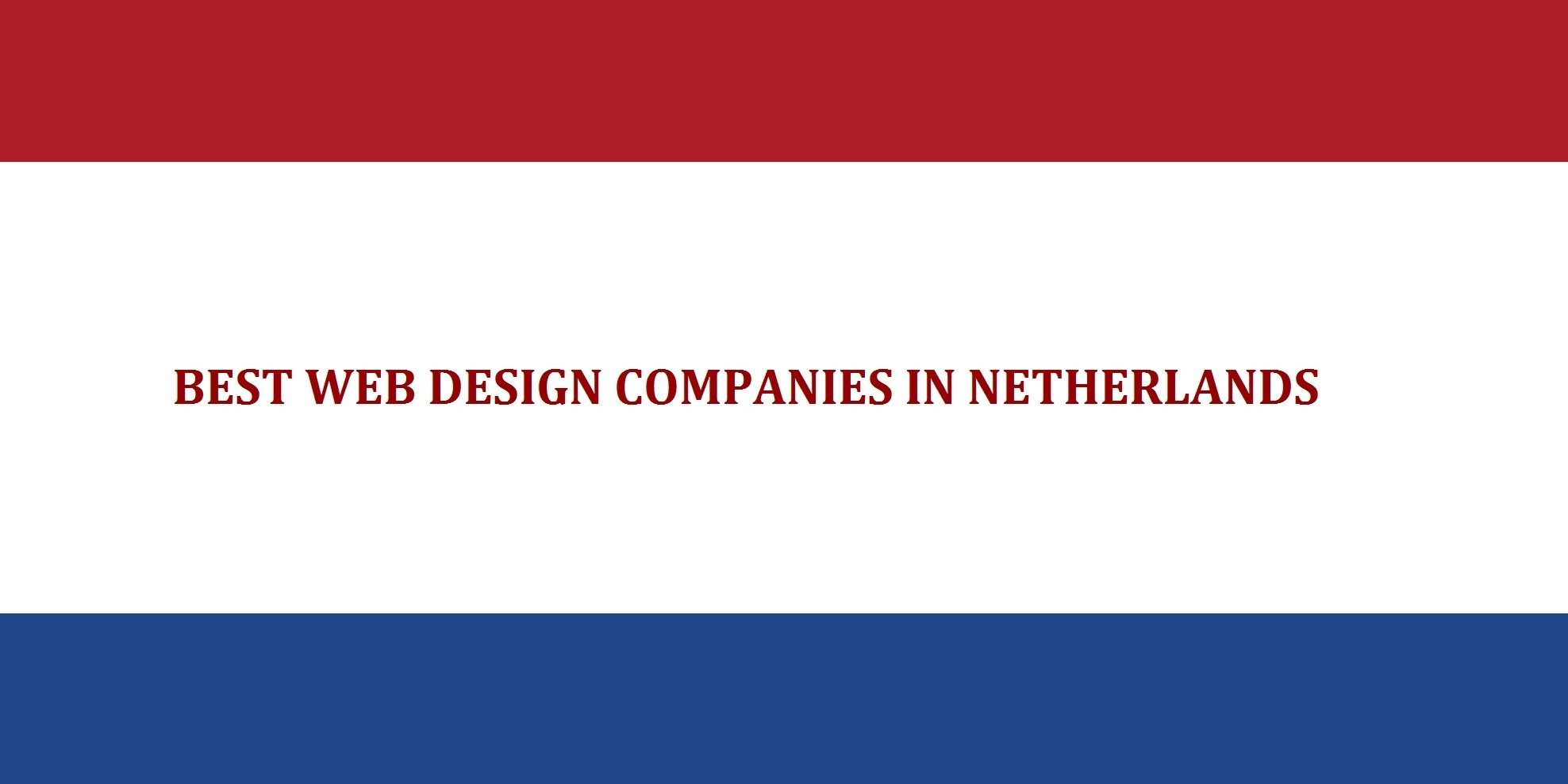 web design company netherlands
