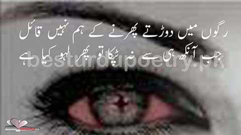Ragon main dorate phirne ke ham nahi qaeial - besturdupoetry.pk