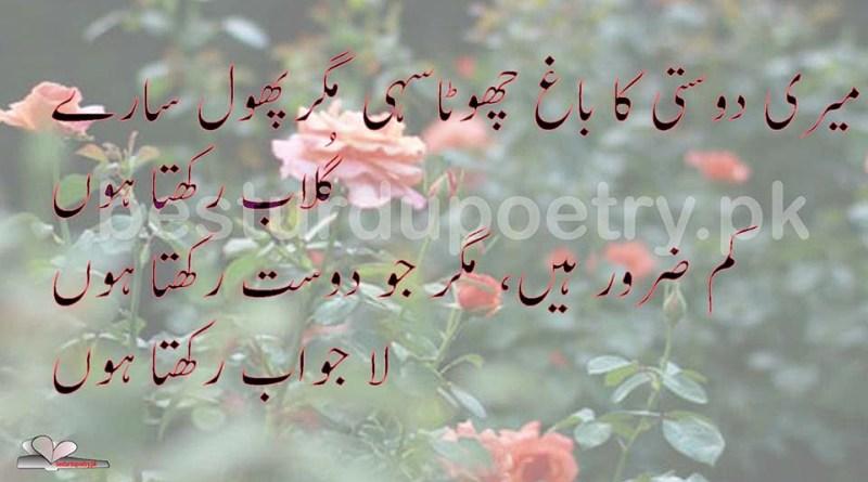 meri dosti ka bagh - dosti poetry - besturdupoetry.pk
