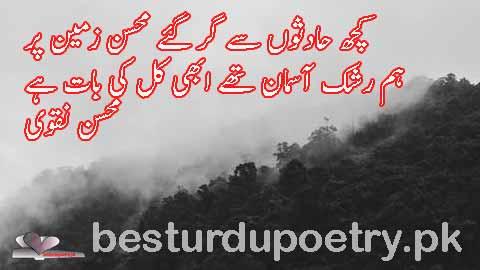 kuch hadson say gir gaye mohsin zameen par - besturdupoetry.pk