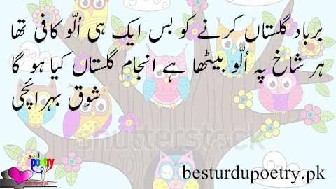 har shaakh pe ullu baitha hai - shauq bahraichi poetry - besturdupoetry.pk