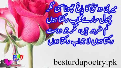 meri dosti ka bagh chota sahi magar - dosti poetry in urdu - besturdupoetry.pk