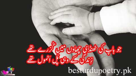 jo baap ki thandi chaon main guzray thay - father's day quotes