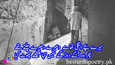 meray bachay ungli thamay dheeray dheeray chaltay thay - father poetry in urdu