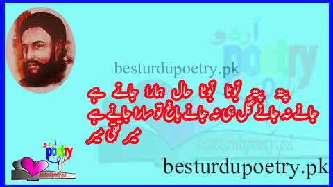 patta patta boota boota lyrics in urdu