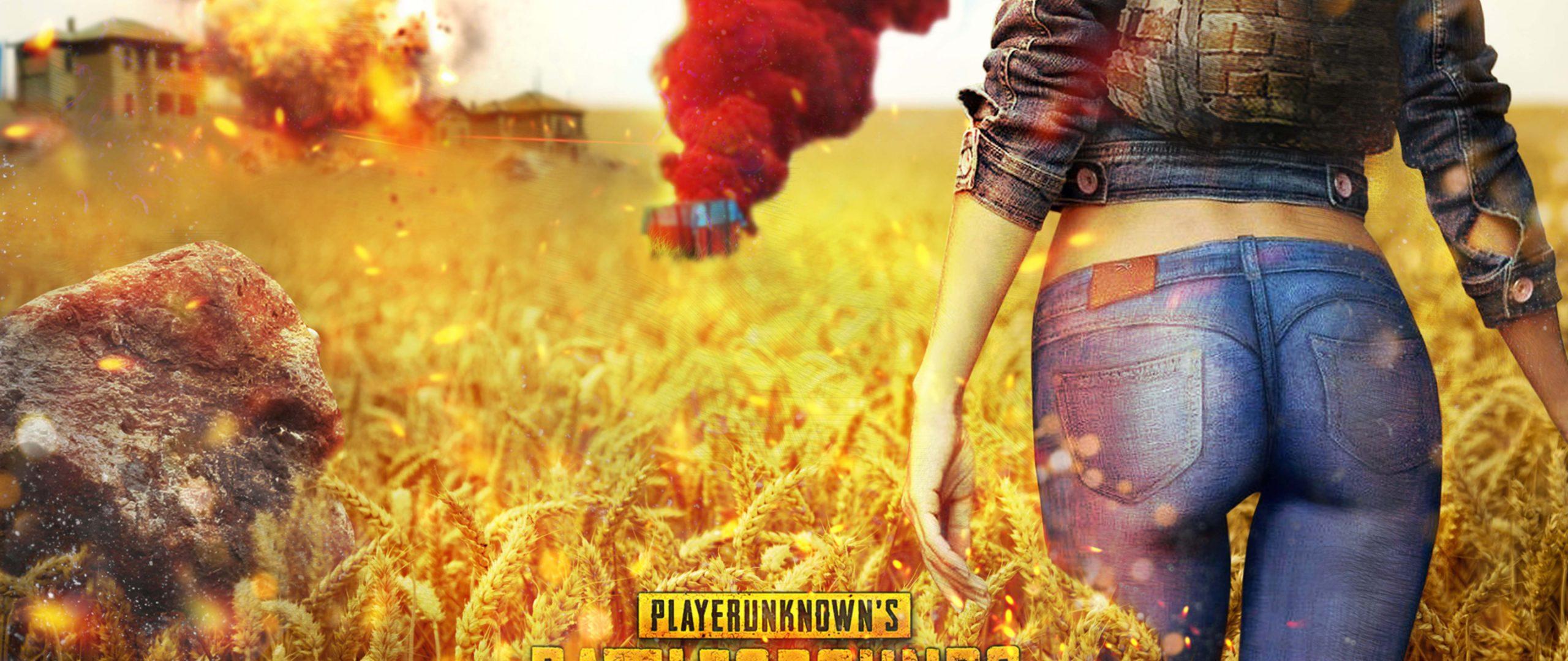 Playerunknowns Battlegrounds PUBG Cover 4K Wallpaper Best Wallpapers