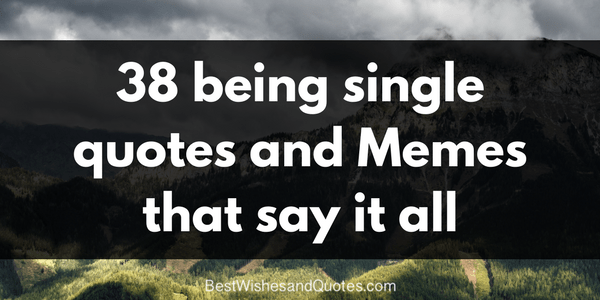 38 Being Single Quotes and Memes That Say It All   Best Wishes and     ShareTweetPin