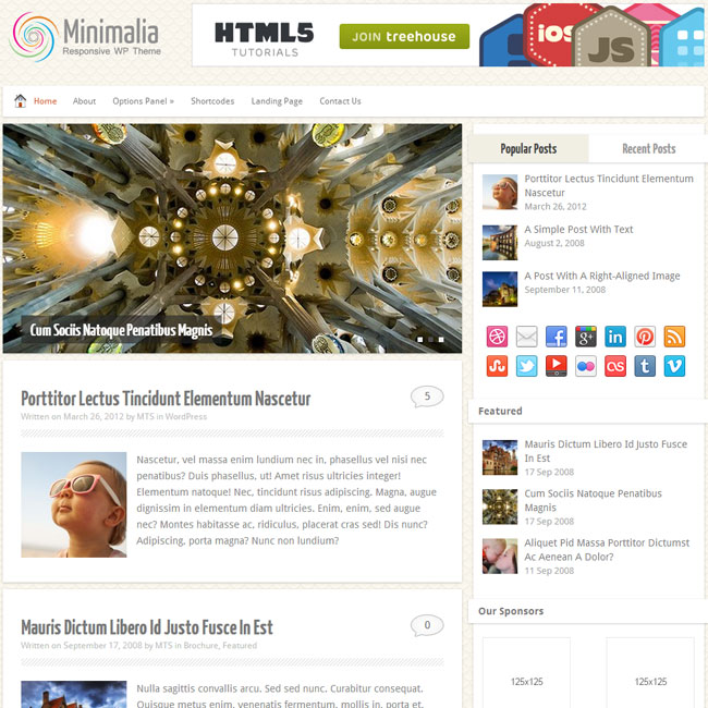 MyThemeShop Minimalia WordPress Theme