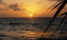 Soloppgang ved det Indiske hav