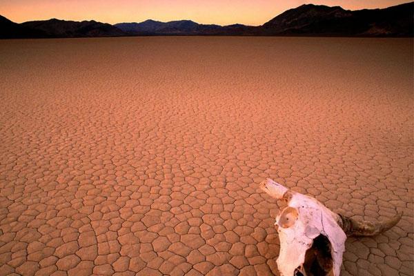Mira, cruza kilómetro y medio de dunas desérticas y allí, a mano derecha, pregunta por el orgamos femenino a ver qué te cuentan...