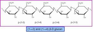 beta 1 3 d glucan doctor nicholas diluzio 300x105 - Home