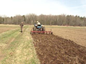 time for cultivating!
