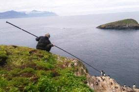 Freydis catching guillemots