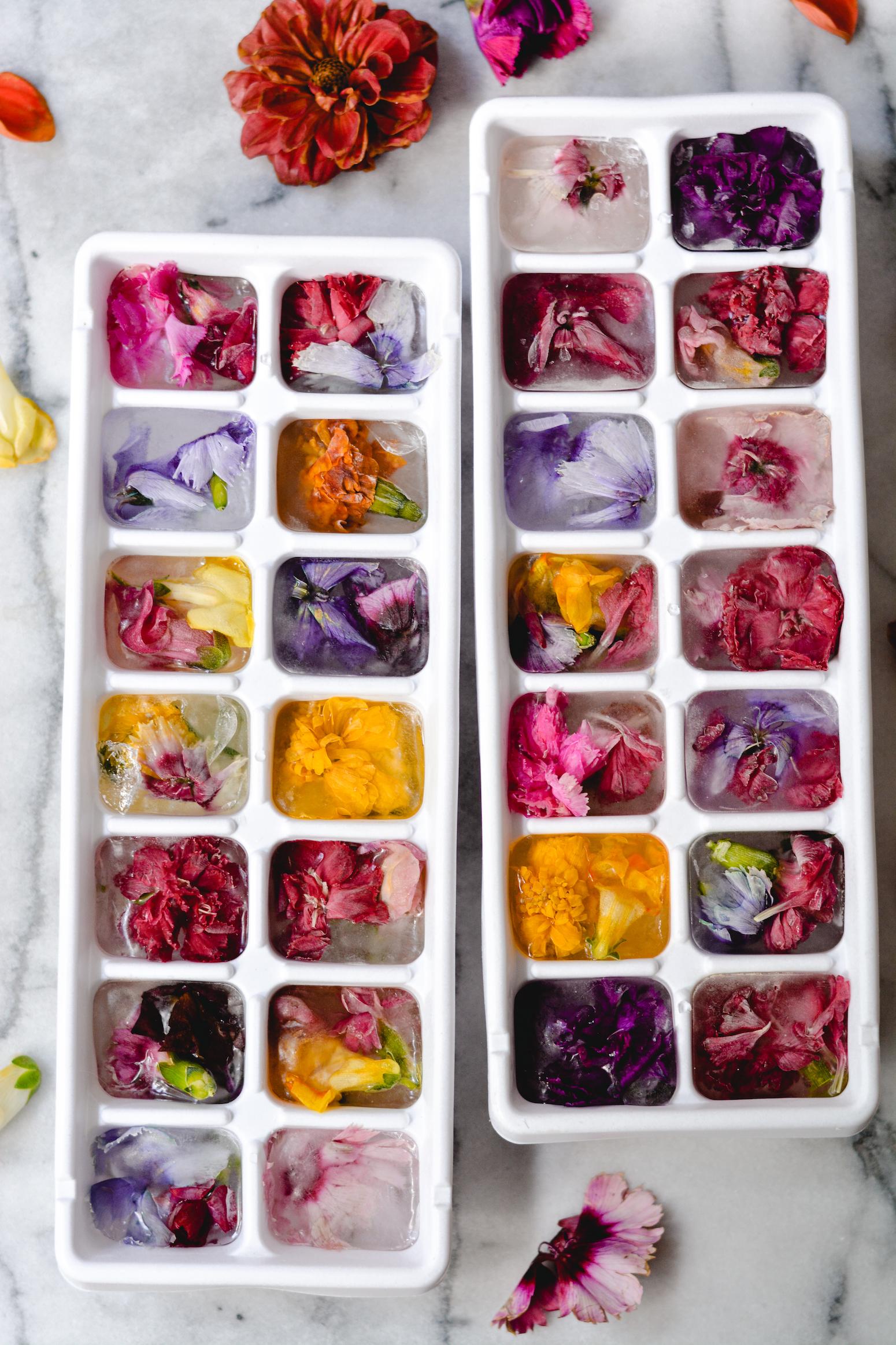 floral ice cubes - bethcakes.com