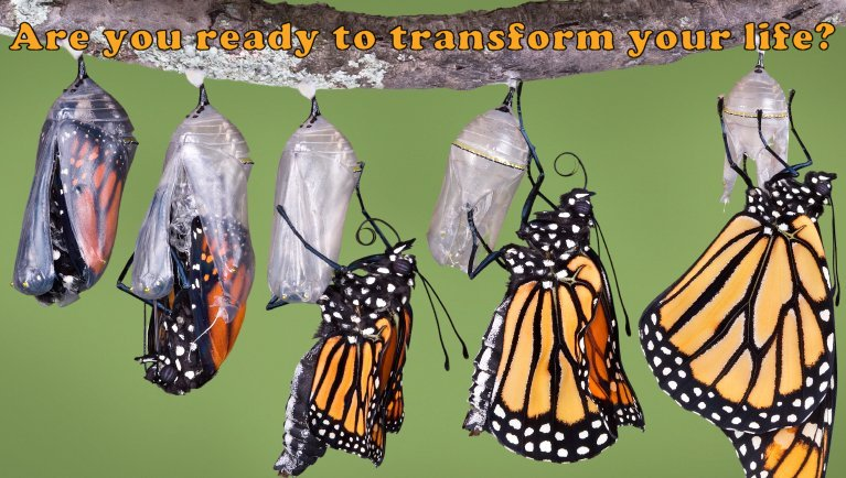 Transformation – A Guide for Change in the Process