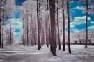 untitled shoot-8272-Edit-2