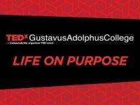 counselor presenter TEDx 2017