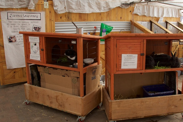 Growhaus bunnies and compost bins Dec 2014