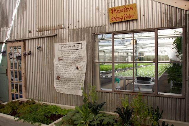 Growhaus hydroponics farm Dec 2014