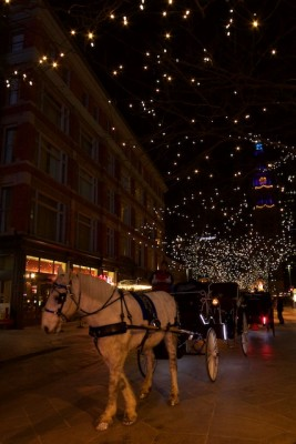Horse and buggy and clocktower Denver Jan 2015