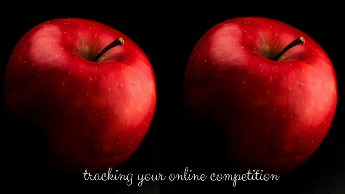 Using online competitor analysis to track competition