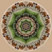 Baby Bison Mandala by Beth Sawickie http://bethsawickie.com/baby-bison-mandala