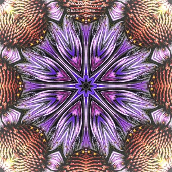 """Image by Beth Sawickie www.BethSawickie.com/echinacea-flower-mandala """"Echinacea Flower Mandala"""""""