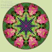 Fall Pokeweed Mandala by Beth Sawickie http://www.bethsawickie.com/fall-pokeweed-mandala
