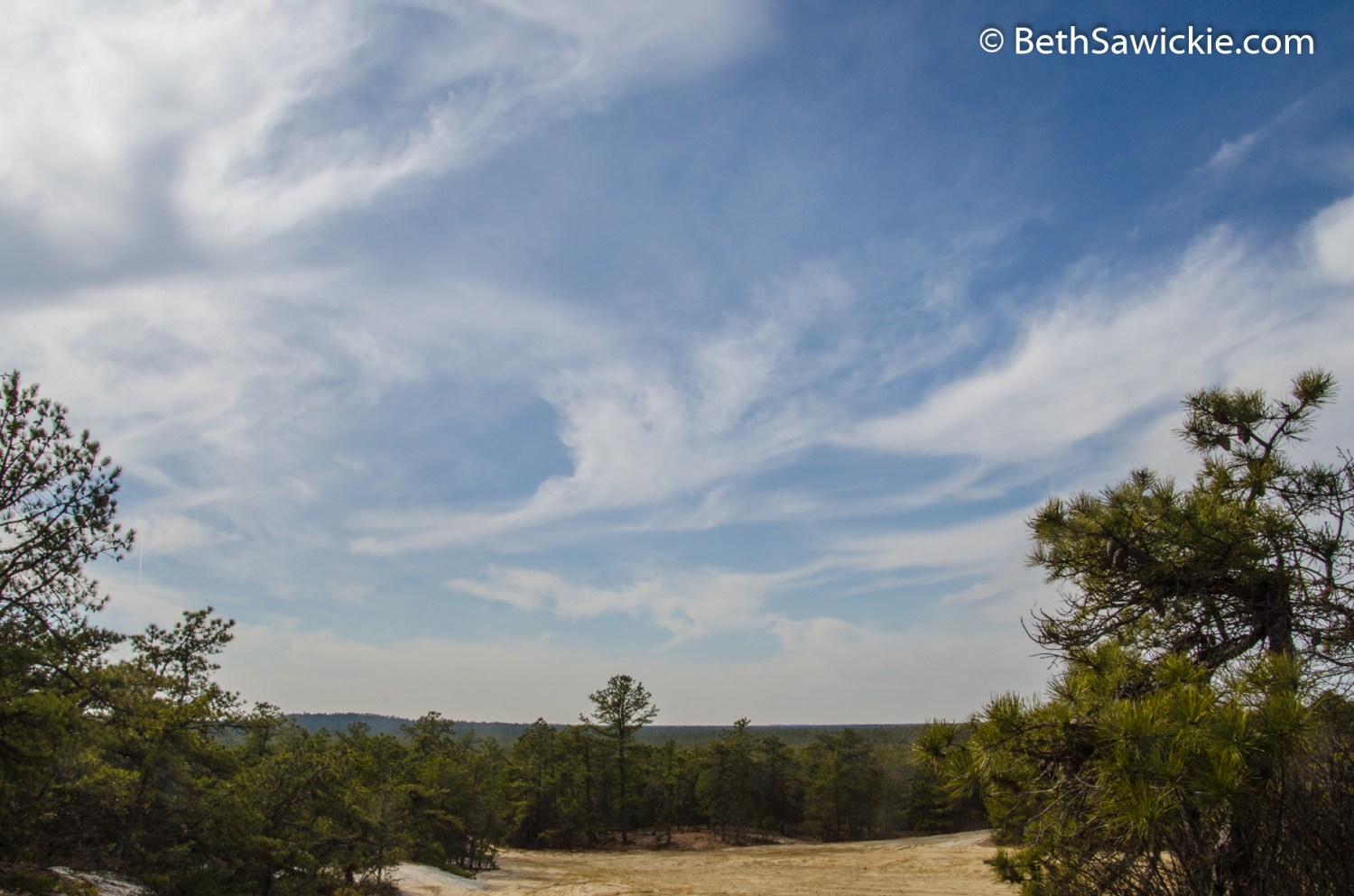 View from Spring Hill in Pine Barrens by Beth Sawickie