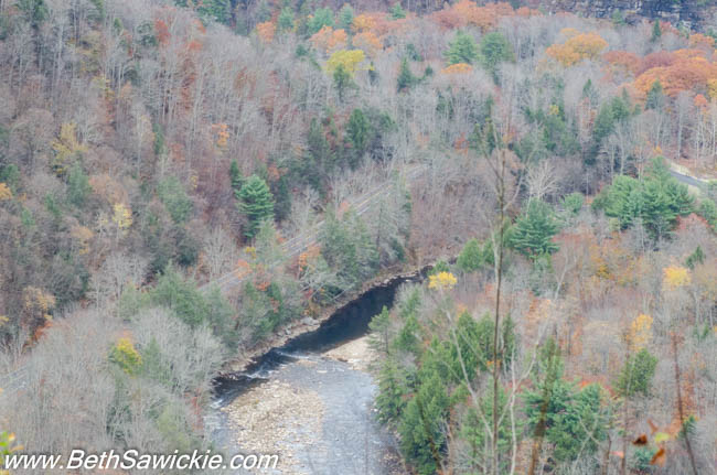 Canyon Vista, Worlds End State Park, PA by Beth Sawickie http://www.BethSawickie.com/our-ricketts-glen-adventure