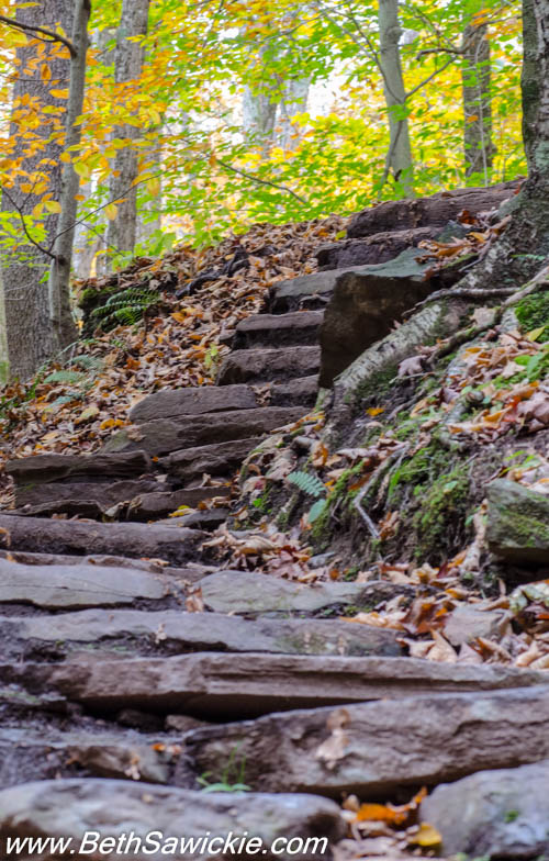 Staircase at Ricketts Glen, PA by Beth Sawickie http://bethsawickie.com/our-ricketts-glen-adventure/