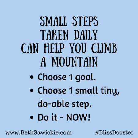 Small Steps Bliss Booster - Beth Sawickie