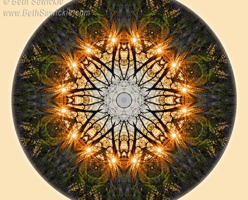 Starburst Through the Trees Mandala by Beth Sawickie http://www.bethsawickie.com/starburst-through-the-trees-mandala