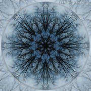 Winter Tree Mandala 2 by Beth Sawickie http://bethsawickie.com/winter-tree-mandala-2