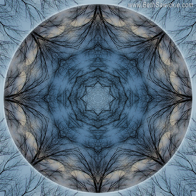 Winter Tree Mandala 4 by Beth Sawickie http://www.bethsawickie.com/winter-tree-mandala-4