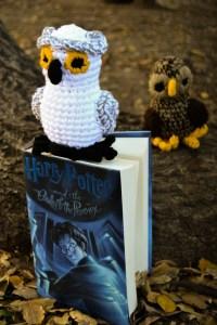HP owls1
