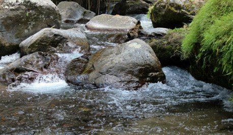 The Pakerisan, beautiful small river