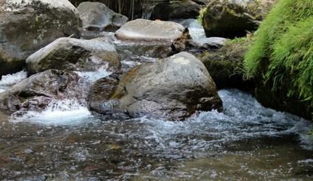 The Pakerisan, beautiful small river
