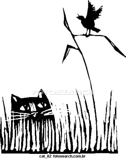 Cat_02