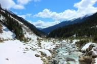 Beautiful Georgia!