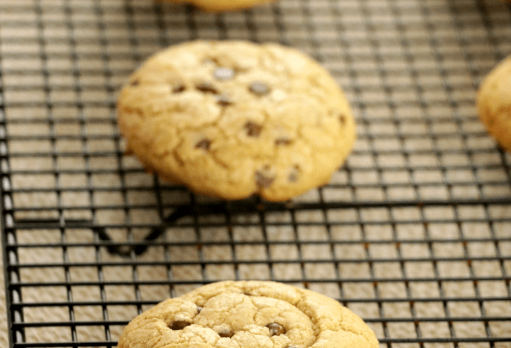 Oatmeal Chocolate Chip Cookies ( Gluten Free / Dairy Free )
