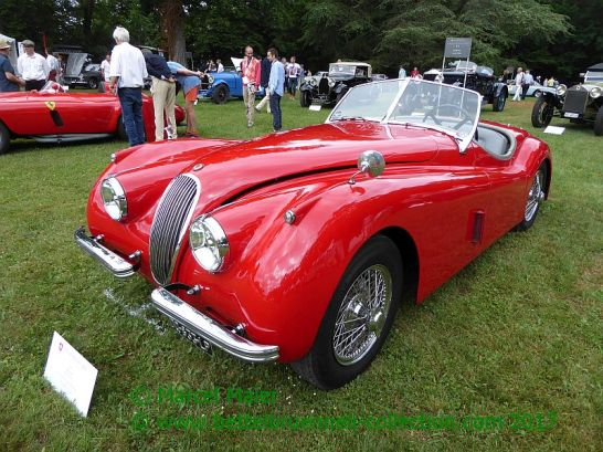 Concours d'Elegance Suisse in Coppet 2017 167h