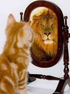 Accepting The Woman in the Mirror