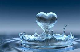tears of love, Parkinson's