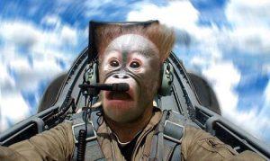 crazy-pilot