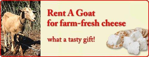 goat-newedit