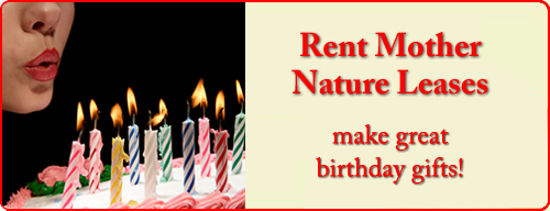 March rent mother nature